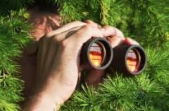 Surveillance in the Christmas Tree