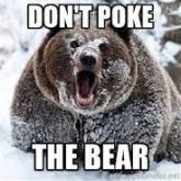 dont-poke-the-bear